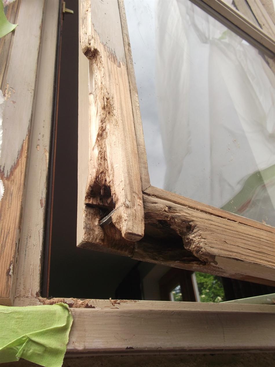 d9 decor bristol – repair of casement window